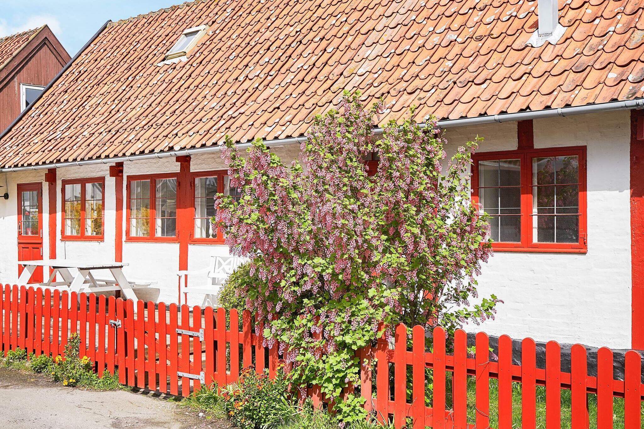 Sommerhus til 6 personer ved Svaneke